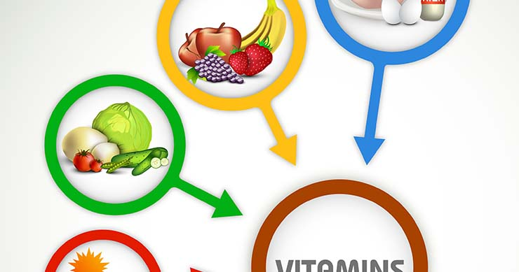 The Vegan Diet – A Complete Guide for Beginners